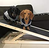 The Fellie Pet Ramp Dogs Portable Ladder Cats Height Adjustable with Non-slip Surface