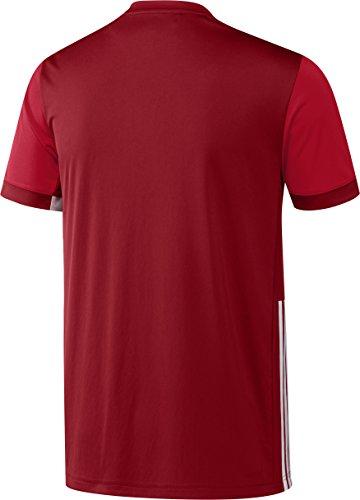 Adidas T-Shirt da uomo T16CC Tee, Uomo, T-Shirt T16 CC TEE, Power Red/Scarlet, M Power Red/Scarlet
