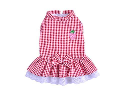 Wangshihao Hund Kleidung Dünne Abschnitt Kleine Hund Prinzessin Kleid Wassermelone Rot Karierten Spitzenkleid, XL