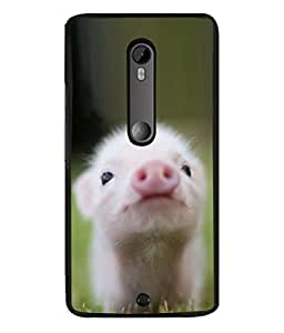 PrintVisa Micropig High Gloss Designer Back Case Cover for Motorola Moto X Style :: Moto X Pure Edition