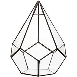 Maceta de Cristal Geométrico para Cactus Plantas Flores Suculentas