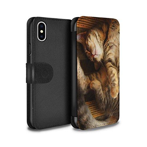 Offiziell Elena Dudina PU-Leder Hülle/Case/Tasche/Cover für Apple iPhone X/10 / Waldpaar/Hase Muster / Die Tiere Kollektion Schlafend/Tabby/Katze