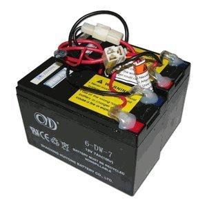 Razor E200 / E300 - Batería de Repuesto para Scooter eléctrico (24 V, 7 Ah, 12 V, 7 Ah)