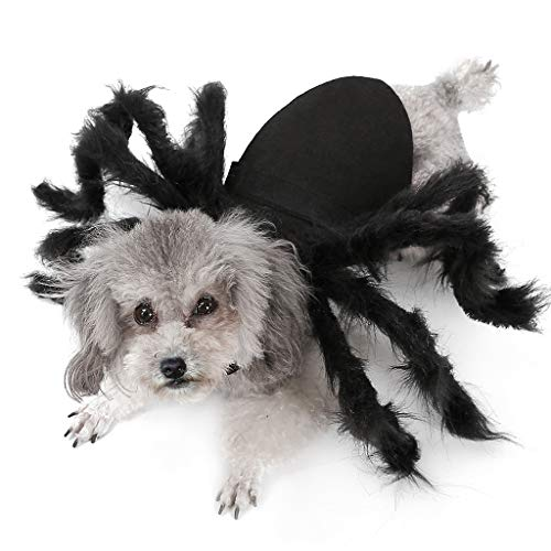 Dog Fancy Weihnachten Dress Kostüm - Y56(TM) Pet Hund Katze Puppy Halloween Spider Weihnachten Pet Cosplay Kostüm Kleidung, Halloween Pet Dog Costume (S, Black)