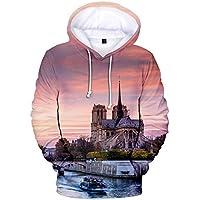 Impresión 3D Camisa de entrenamiento Gran Tamaño Suelto Capucha Notre Dama Delaware París Impresión Hoody Vistiendo Cómodo/rosado/S