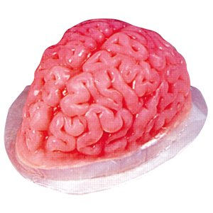 Puddingform Gehirn