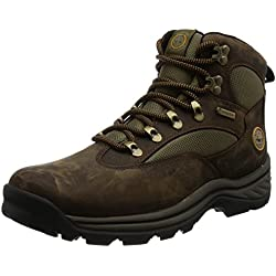 Timberland Chocorua Trail Gtx 1 - Botas de senderismo para hombre, color marrón, talla 42