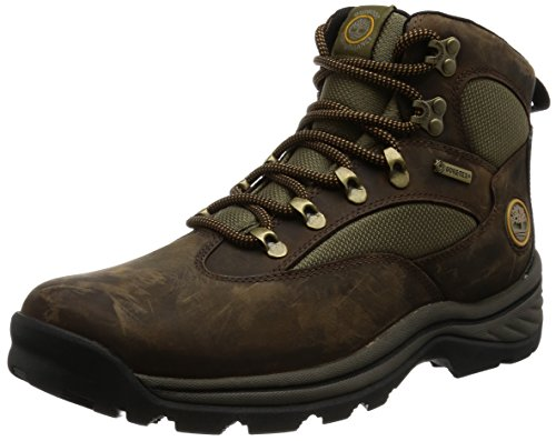 Timberland 15130 Chocorua Trail RG Hike FTP, Scarpe da Trekking uomo, Marrone (Braun (Brown W/ Green)), 43.5