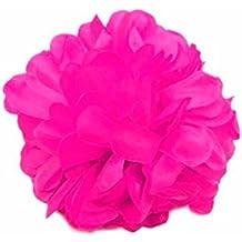 c1214fb0d023 Juego Juego Joyas accesorios Sevillana flamenca flor abanico Flamenco.  Disfrazjaiak Flor de Pinza Fucsia - Accesorios