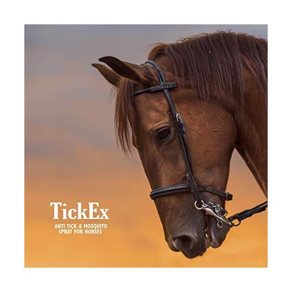 Flea and ticks repellent spray by TickEx | Flea treatment for cats, dogs & horses | Tick remover & flea spray 100ml | Flea treatment for the home 7