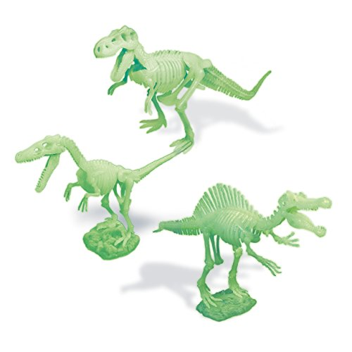 Dr. Steve Hunters cl1766K–Jurassic Night–3Glowing Dinosaurs Skeleton Models to Assemble