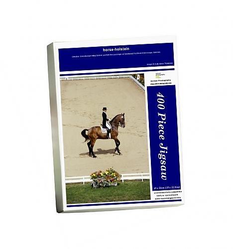 417GKLQ7jTL BEST BUY UK #1Photo Jigsaw Puzzle of horse holstein price Reviews uk