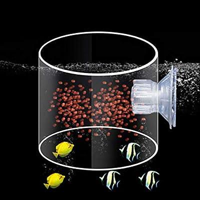 IFEN Aquarium Fütterungskreis Acryl Fütterungsring Trompete SiYuan Aquarium Fütterungsring Aquarium Fisch - Transparent - S