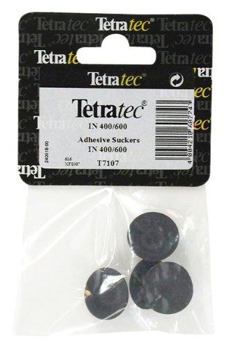 Tetra Größe