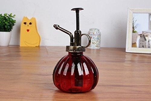 bemodst-brumisateur-pulverisateur-vintage-colore-a-stries-pour-plantes-fleurs-bonsai-red