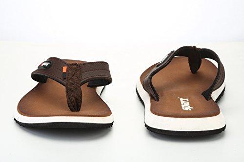Sparx Men's BRBR Flip Flops Thong Sandals-9 UK/India (43.33 EU) (SF0541G)
