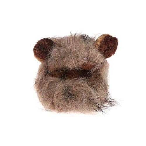 Dabixx Haustier-Kostüm Katze Cosplay Löwen Hundekappe Hut Weihnachten Kleid mit Ohren - Ohr B