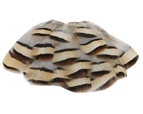 ERGEOB 100 stück Natürliche Rebhuhn feder federn fowl Schutt 5-8cm