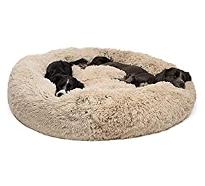 Produktbeschreibung:   1. Das Deluxe-Haustierbett ist das originale Bett, sein stilvolles und dennoch schlichtes Design bietet höchsten Komfort für Ihr Haustier. Die Außenseite besteht aus strapazierfähigem Polycanvas, das das Futter isoliert und ...