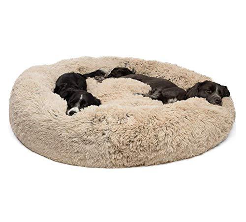 Segle Deluxe Rundes Haustierbett für Hunde und Katzen, weich, waschbar,Hundebett Gepolstert Katzenbett mit Kissen ideal für kleine bis mittlere Groß Hunde-80 * 80 * 18cm