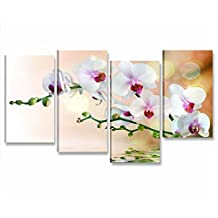 Shabby chic quadri for Quadri moderni orchidee