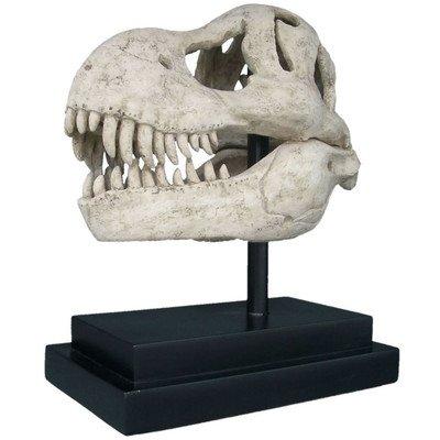 design-toscano-t-rex-dinosaure-tete-de-mort-fossil-statue-sur-support-de-musee