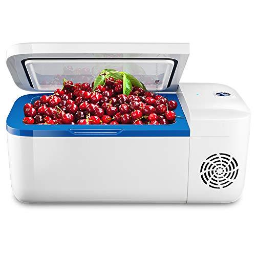 CHUN LING Mini-Kühlschrank, elektronischer Kühler und wärmeres