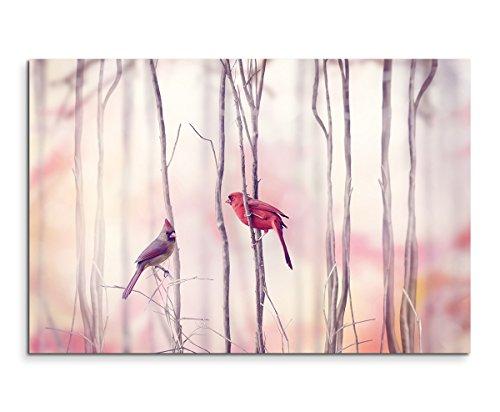 Sinus Art Wandbild 120x80cm Tierfotografie – Nördliche Kardinäle