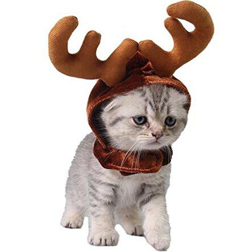 Bolbove Pet Weihnachten Rentier Geweih Hat für Katzen Kopf Tragen Frei Größe -
