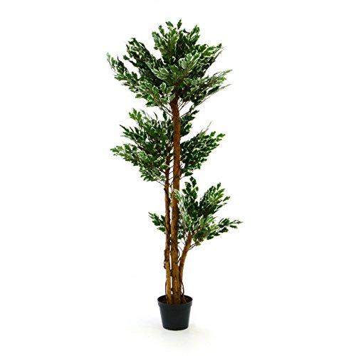 Künstlicher Ficus Benjamin Kunstpflanze Kunstbaum mit vielen Zweigen Echtholz-Stämmen und Topf - Gesamthöhe 150 cm - grün weiß