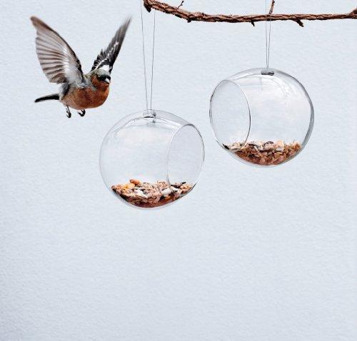 Eva Solo 571032 Vogelfutterkugel, 2er Set, Glas, 11 x 12 cm, Mit Aufhängung - 2