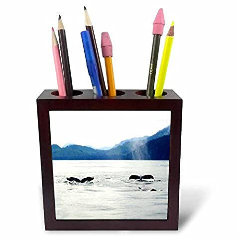3dRose ph_62671_1 Whale Tails in Alaska-Tile Pen Holder, 5-Inch