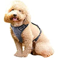 Rabbitgoo No Pull Dog Harness Small, Front Clip Pet Vest Harness with Handle Adjustable Padded Harness Easy Control Puppy Harness for Outdoor Training Walking-Black