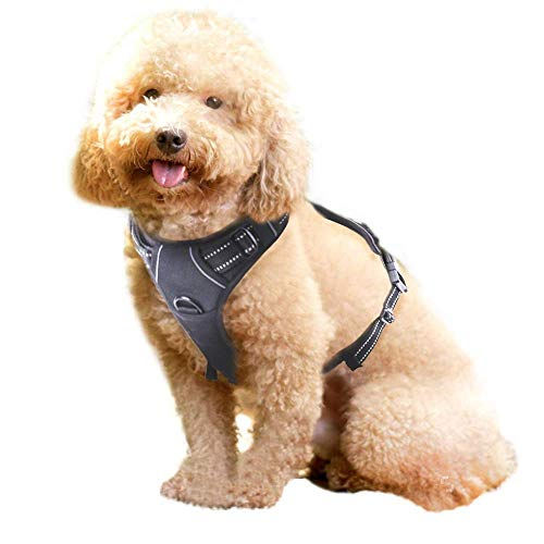 Rabbitgoo No Pull Dog Harness Medium, Front Loading Pet Vest Harness with Handle Strong Adjustable Dog Padded Harness Reflective Mesh Lightweight Easy Control Perfect Fit Dog for Outdoor Training Walking-Black
