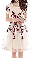 Jashvi Creation Women's Semi Stitched Georgette Cream Dress With Red Flowers