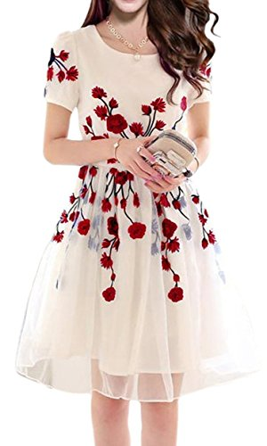 Jashvi Creation Womens Semi Stitched Georgette Cream Dress With Red Flowers