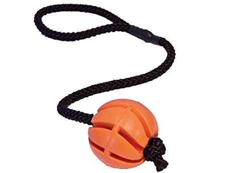 hundeinfo24.de CopcoPet – hundeballspirale am Seil Gr.: 30 cm x 7 cm Ø Orange