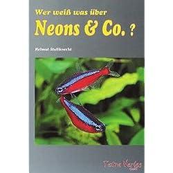 Wer weiß was über Neons & Co.