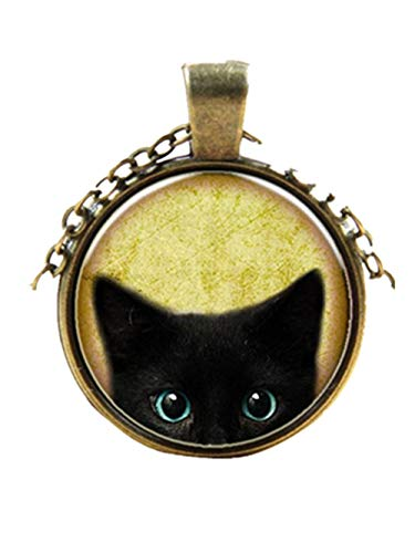 Innerternet Damen-Anhänger & Clips Ilaria Darlin's Edelstahl Steampunk Geheimnis Katze Retro Cabochon Glas Anhänger Kette Halskette (Silber)