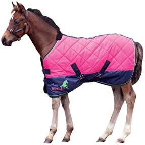 Masta Avante 120 Foal Stable - Manta / Sábana para caballo, color rosa, talla 3.3 Ft