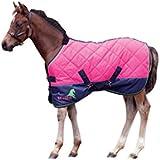 Masta Avante 120 Foal Stable - Manta / Sábana para caballo, color rosa, talla 3.3 Ft