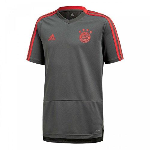 adidas Kinder 18/19 FC Bayern Trainingstrikot, Utility ivy/Red, 176