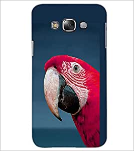 PrintDhaba Parraot D-1982 Back Case Cover for SAMSUNG GALAXY GRAND 3 (Multi-Coloured)