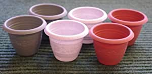 Brand New 6pk Small Seedling Plant Pots Grey, Terracotta and Green