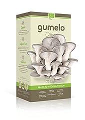 Idea Regalo - -Gumelo - Kit per la coltivazione di funghi Pleurotus grigi, freschi, biologici, di elevata qualità, idea regalo per feste/compleanni o semplice pensiero
