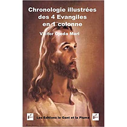 Chronologie illustree des 4 Evangiles en 1
