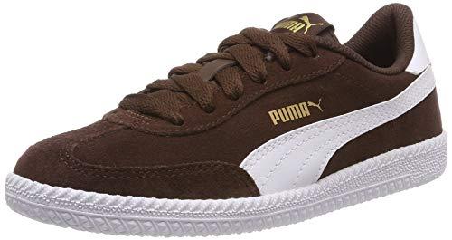 Puma Unisex-Erwachsene Astro Cup Fitnessschuhe Braun (Chestnut White), 38 EU