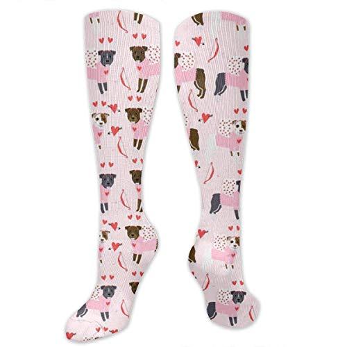 Pitbull Love Bug Novelty Tube Socks for Unisex Bicycling Fashion Long Socks -