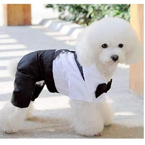 YiGo Gut aussehende Hund Strampler Kleidung Formal Hund Overall mit Fliege Bräutigam Smoking New Pet Kostümen (Hunde Bräutigam Kostüm)