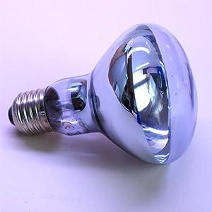 Reptile Tortoise Vivarium Neodymium Daylight UVA Lamp 100W (E27 Screw-In) from Reptipet